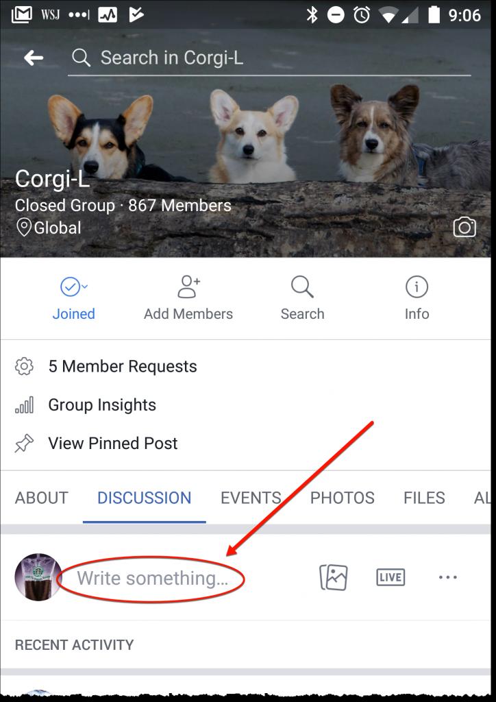 Corgi-L Mobile Page